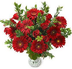 5 adet kirmizi gül 5 adet gerbera aranjmani  Çiçekçi Bursa