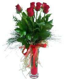 vazo içerisinde 5 kırmızı gül  Bursaya çiçek siparişi vermek