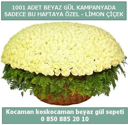 1001 adet beyaz gül sepeti özel kampanyada  Bursa cicekci bursaya çiçek yolla