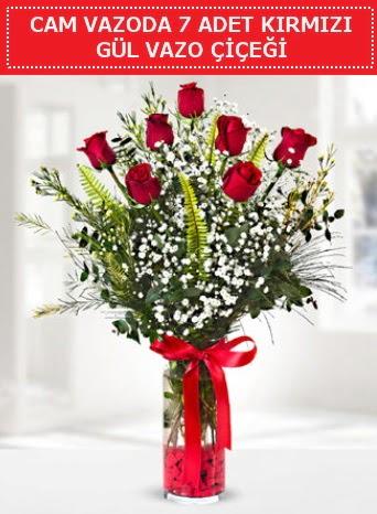 Cam vazoda 7 adet kırmızı gül çiçeği  Bursa cicekci bursaya çiçek yolla