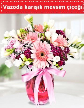 Vazoda karışık mevsim çiçeği  Bursa çiçek gönderimi