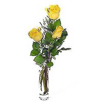 Bursa çiçek çiçekçi  3 adet kalite cam yada mika vazo gül