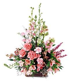 Bursadaki çiçekçi firmaları  mevsim çiçeklerinden özel