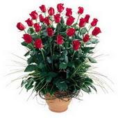 Bursa çiçek yollama çiçek satışı  10 adet kirmizi gül cam yada mika vazo