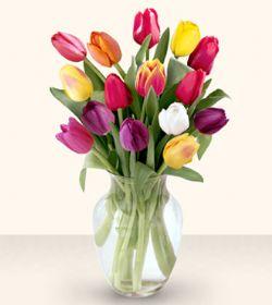 Bursa çiçek yolla çiçek , çiçekçi , çiçekçilik  13 adet cam yada mika vazoda laleler