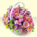 Bursa çiçek satışı  bir sepet dolusu kir çiçegi  Bursa cicekci bursaya çiçek yolla