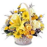 sadece sari çiçek sepeti   Bursa cicekci bursaya çiçek yolla