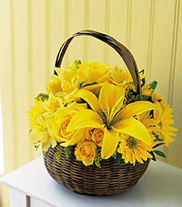 sepet içerisinde sarinin sihri  Bursa çiçek gönder