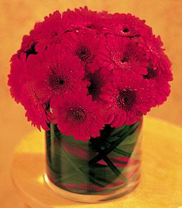 Bursadaki çiçekçi firmaları  23 adet gerbera çiçegi sade ve sik cam içerisinde