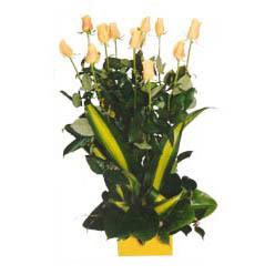 12 adet beyaz gül aranjmani  Bursa çiçek gönderme merkezi