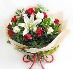 güller ve kazablanklardan görsel bir buket  Bursadaki çiçekçiler