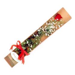 Bursa çiçek gönderimi  Kutuda tek 1 adet kirmizi gül çiçegi