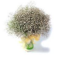 çiçek siparişi bursa  cam yada mika vazo içerisinde cipsofilya demeti