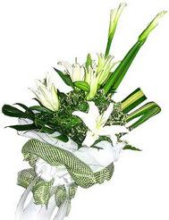 Bursaya çiçek siparişi vermek  3 dal kazablanka çiçegi ve yesillikler