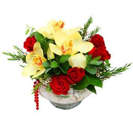 online bursa çiçek siparişi   1 kandil kazablanka ve 5 adet kirmizi gül