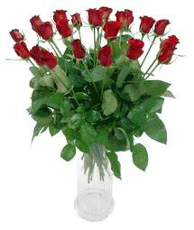 Bursaya çiçek yolla  11 adet kimizi gülün ihtisami cam yada mika vazo modeli