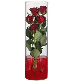 cam içerisinde 7 adet kirmizi gül  Bursa çiçek yolla çiçek , çiçekçi , çiçekçilik