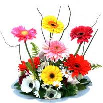 Çiçekçi Bursa  camda gerbera ve mis kokulu kir çiçekleri