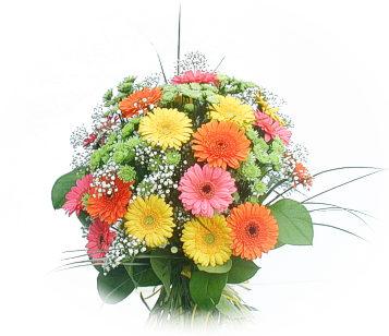 13 adet gerbera çiçegi buketi  Bursa çiçek yolla