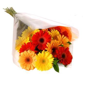 Karisik renklerde gerbera buketi  Bursa çiçek gönder