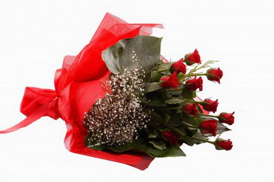 Bursa çiçekçisi hediye çiçek yolla  11 adet kirmizi gül buketi çiçekçi