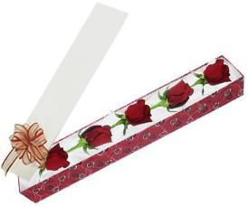 Bursadaki çiçekçiler  kutu içerisinde 5 adet kirmizi gül