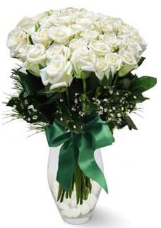 19 adet essiz kalitede beyaz gül  Bursa çiçek yolla çiçek , çiçekçi , çiçekçilik