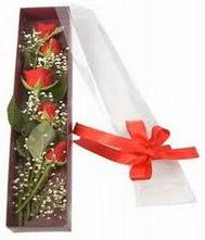 kutu içinde 5 adet kirmizi gül  Bursa çiçek çiçekçi
