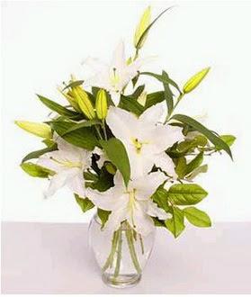 online bursa çiçek siparişi   2 dal cazablanca vazo çiçeği
