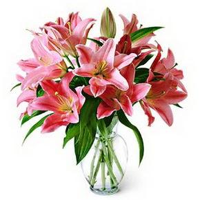 3 dal kazablanka görsel vazosu  Bursa çiçek çiçekçi