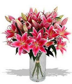 4 dal cazablanca görsel vazosu  Bursaya çiçek siparişi