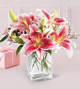 2 dal kazablanka görsel vazosu  Bursa çiçekçisi hediye çiçek yolla