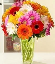 Bursa online çiçek siparişi  15 adet gerbera çiçek vazosu