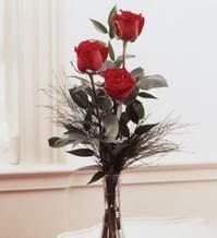 Bursadaki çiçekçiler  Vazoda 3 adet güzel gül