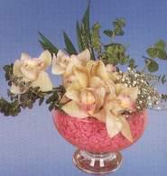 çiçek siparişi bursa  Dal orkide kalite bir hediye