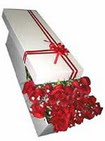 Bursaya çiçek yolla  11 adet 1.kalite magnum güller