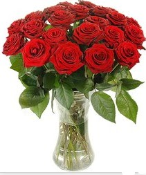 çiçek siparişi bursa  Vazoda 15 adet kırmızı gül tanzimi