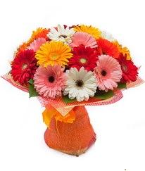 Renkli gerbera buketi  Bursa çiçek ucuz çiçek gönder