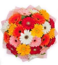 15 adet renkli gerbera buketi  Bursa çiçek satışı