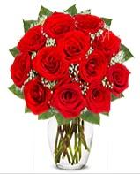 12 adet vazoda kıpkırmızı gül  Bursa online çiçekçi