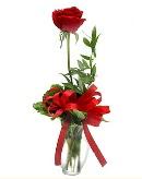 vazo içerisinde 1 adet kırmızı gül  Bursaya çiçek yolla