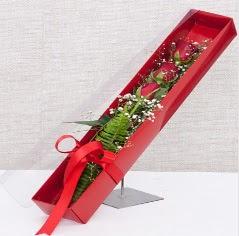 Kutu içerisinde 3 adet kırmızı gül  Bursa çiçek yolla