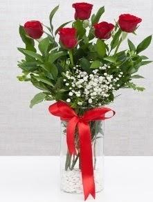 cam vazo içerisinde 5 adet kırmızı gül  Bursa çiçek gönder