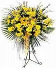 Bursa çiçek satışı  Sari kazablanka Ferforje
