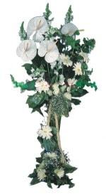 çiçek siparişi bursa  antoryumlarin büyüsü özel