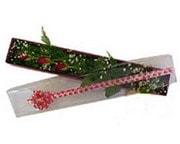 Çiçekçi Bursa  3 adet gül.kutu yaldizlidir.