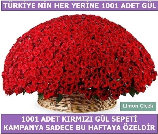 1001 Adet kırmızı gül Bu haftaya özel  Bursa çiçek çiçekçi
