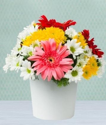 Seramik Vazoda Gelbera ve Papatya  online bursa çiçek siparişi
