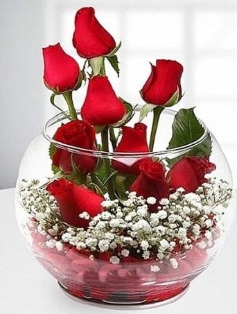 Kırmızı Mutluluk fanusta 9 kırmızı gül  Bursa çiçekçisi hediye çiçek yolla