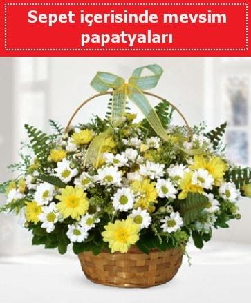 Sepet içerisinde mevsim papatyaları  Bursadaki çiçekçi firmaları